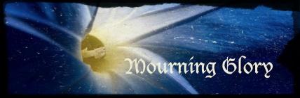 mourningglorybanner2